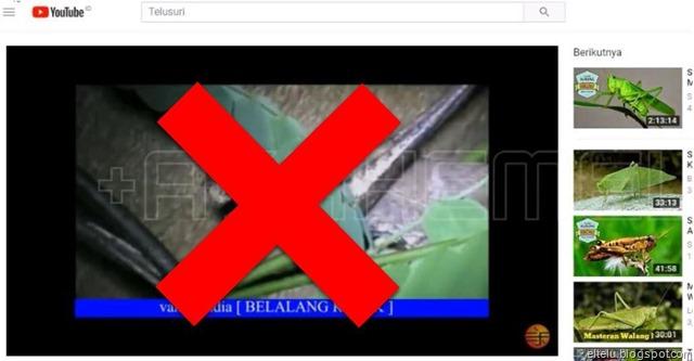 Contoh Video YouTube yang Diupload oleh Orang Lain dan Ingin Dihapus