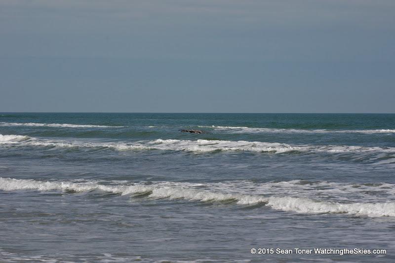02-07-15 Corpus Christi & South Padre Island - _IMG0467.JPG