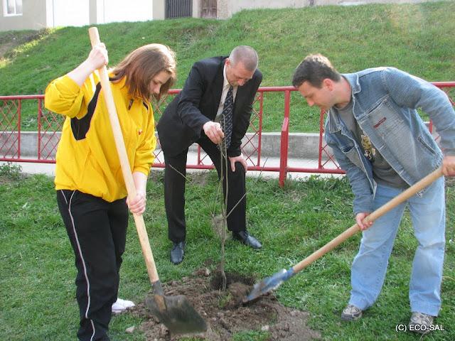 Curăţenia de primăvară 2009 - IMG_2051.jpg