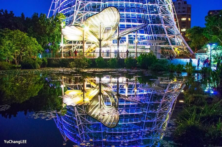 科博館植物園夜間燈光秀