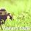 Kamera OnAirNews's profile photo