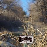 01-05-13 Arbor Hills Nature Preserve - IMGP3965.JPG