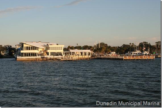 Dunedin N27 (28)