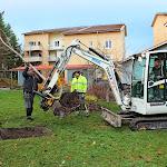 Flyttning träd mm Brf Violen Nov 2013 009.jpg