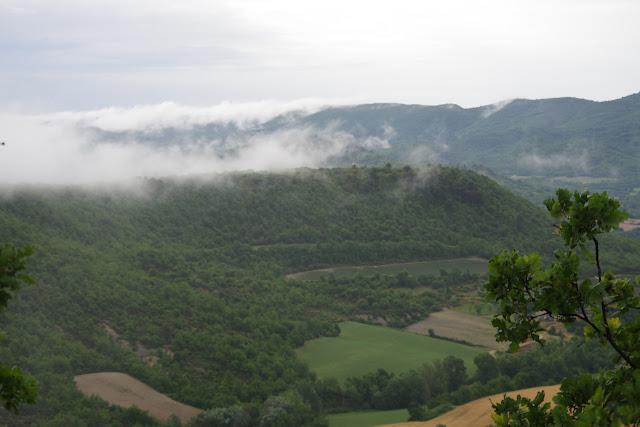 Le plateau de Coupon et le Grand Lubéron depuis les Hautes-Courennes, 550 m, Saint-Martin-de-Castillon (Vaucluse), 14 juin 2015. Photo : J.-M. Gayman