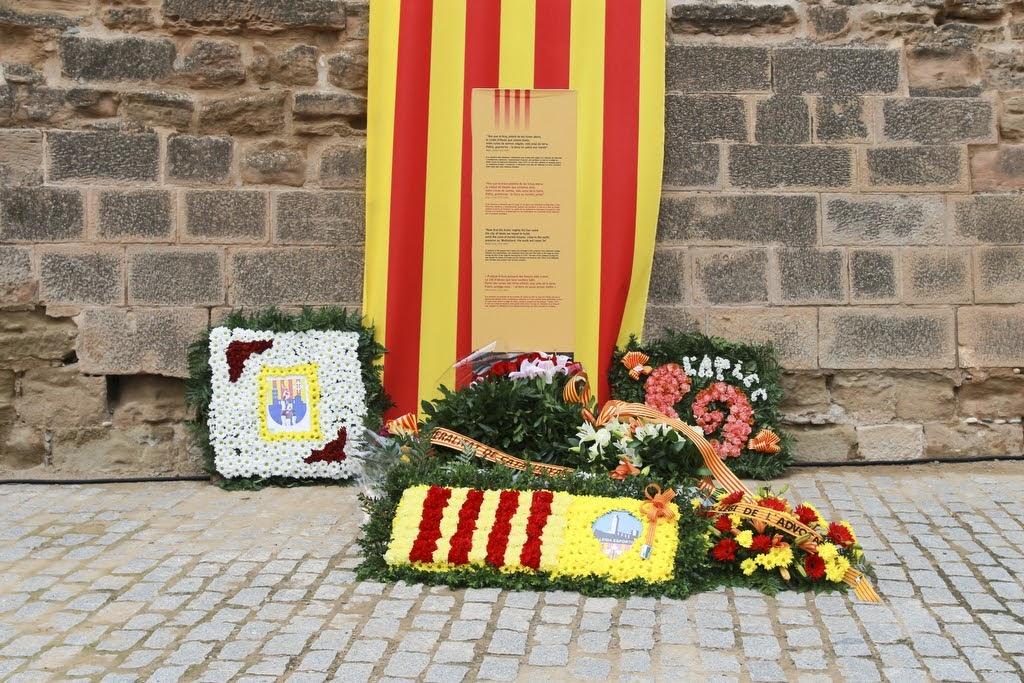 Ofrena floral Diada Nacional de Catalunya Seu Vella Lleida 11-09-2015 - 2015_09_11-Ofrena floral Seu Vella-27.JPG