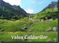 caldarilor1