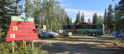 buses-2016-08-8-15-14.jpg