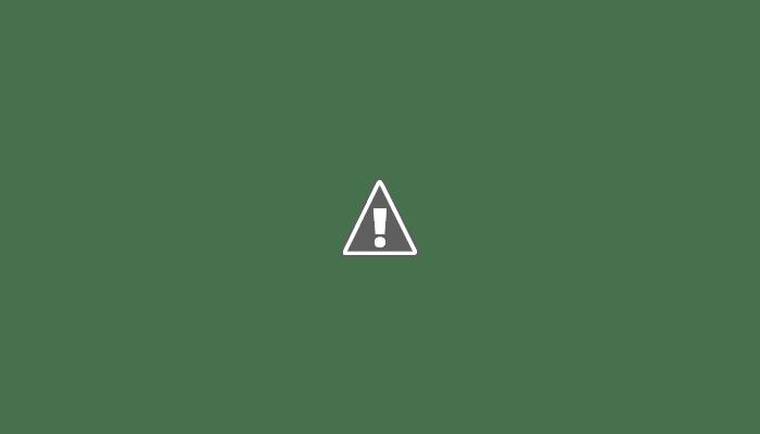 श्री राम जन्मभूमि तीर्थ क्षेत्र समर्पण निधि के अभियान के तहत रायपुरिया में भव्य वाहन यात्रा का आयोजन किया गया