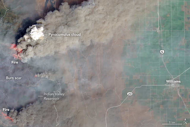 On 6 August 2018, the Operational Land Imager (OLI) on Landsat 8 captured this image of a dense column of smoke topped by a pyrocumulus cloud over the Ranch fire. Photo:  Joshua Stevens / NASA Earth Observatory