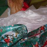 Christmas 2010 - 100_6412.JPG