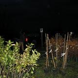 Hammo Planting - Shannon Schiesser - IMG_4867.JPG