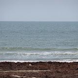Surfside 2011 - 100_9476.JPG