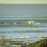 _DSC7355.thumb.jpg