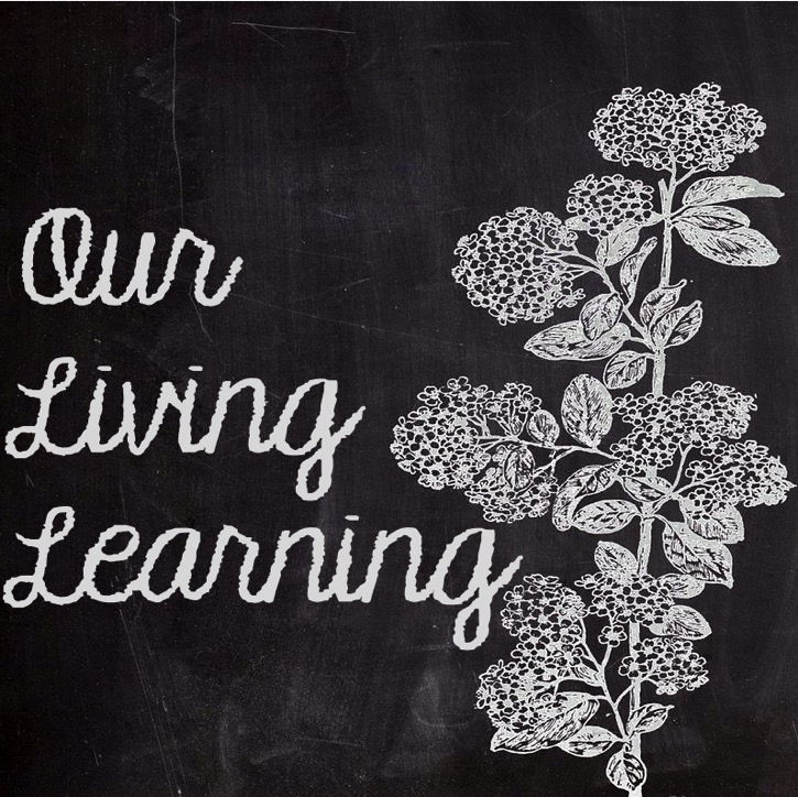 OurLivingLearning Profile
