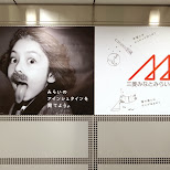 a young einstein? - you be the judge in Shibuya, Tokyo, Japan