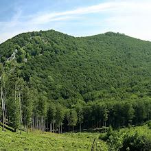 IMG_8590_panorama.jpg