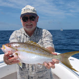 Joe's Big Yellow Tail.jpg