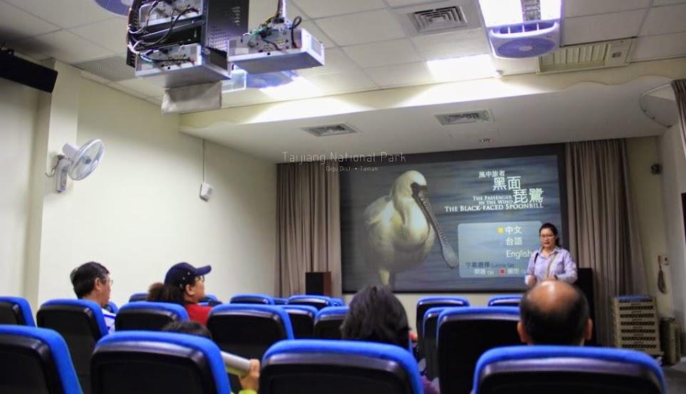 台南七股生態旅遊
