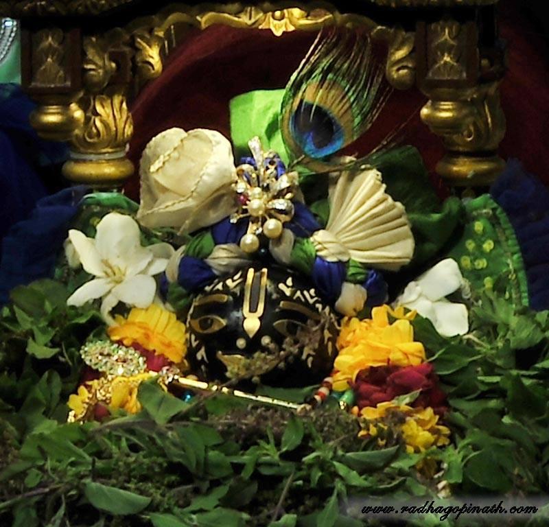 ISKCON Chowpatty Deity Darshan 22 Jan 2016 (1)