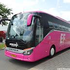 Pink Setra Besseling (8).jpg