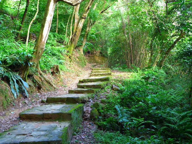 Taipei. Si Shou shan, en plein coeur de Taipei. Accès par un autre chemin moins emprunté. - P1240899.JPG