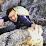 Alfred Li's profile photo