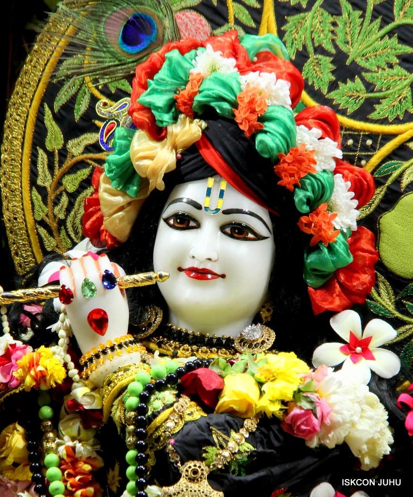 ISKCON Juhu Sringar Deity Darshan on 31st Dec 2016 (18)