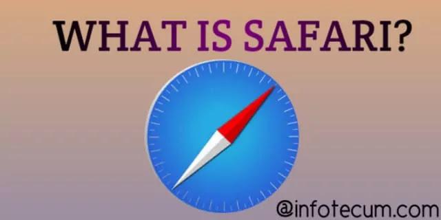 What is safari