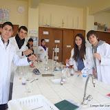 Practica ácidos y bases