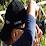 Luis Almeida's profile photo