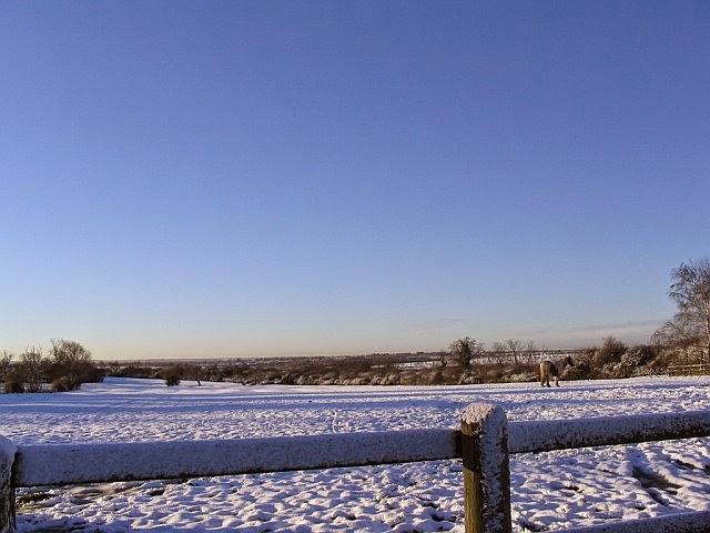 Woodhurst In The Snow - 2115098510233_0_BG.jpg