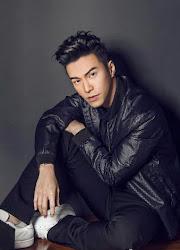 Lawrence Wong / Wang Guanyi Malaysia Actor