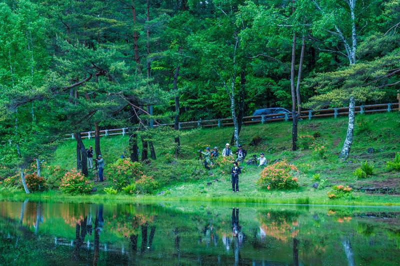 Mishaka Pond photo16