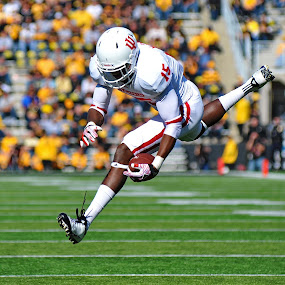 In Flight by Tom Vogt - Sports & Fitness American and Canadian football ( football, catch,  )
