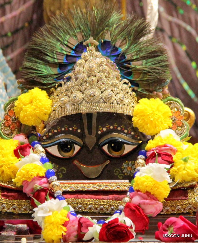 ISKCON Juhu Sringar Deity Darshan on 19th Oct 2016 (20)