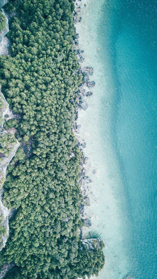 Aerial Woods And Beach IPhone Wallpaper