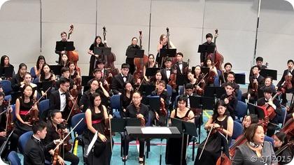 Violin Concert in Nov