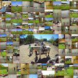 Pâques Multisports 2014