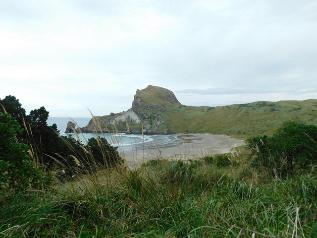 C15_NZ NI Castlepoint_2018-04-28_DSCN9183