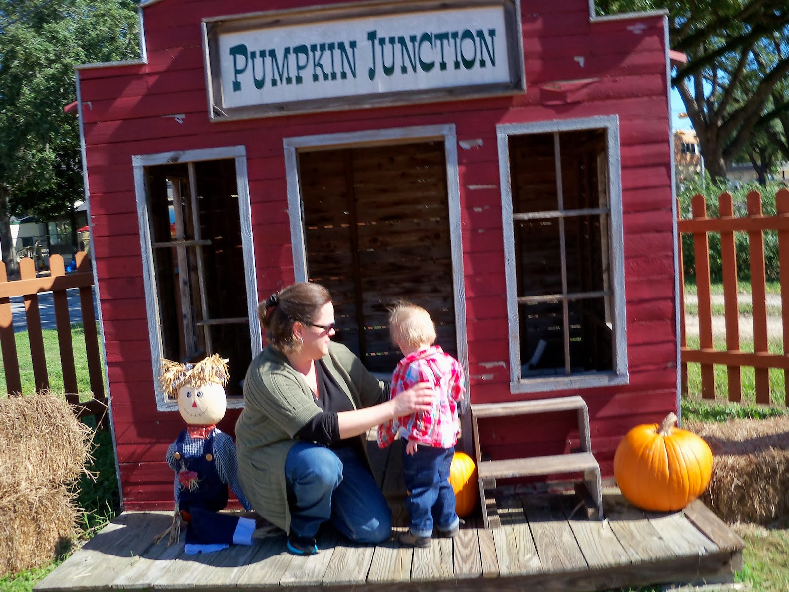Pumpkin Patch - 115_8271.JPG
