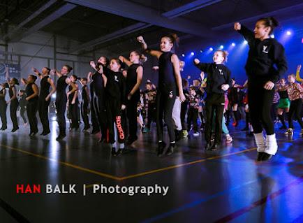 Han Balk Voorster Dansdag 2016-5335.jpg