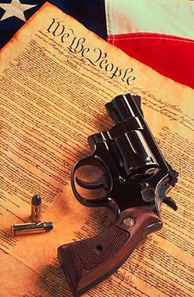 guns essay
