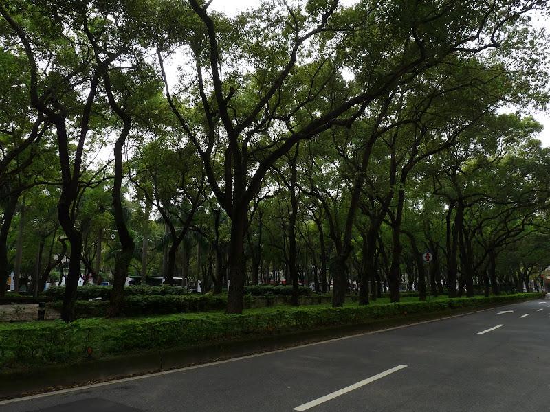 TAIWAN . Taipei De Shandao Temple jusqu à T 101 à pied... - P1160254.JPG