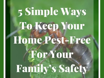 5 Simple Ways To Keep Your Home Pest-Free For Your Family's Safety