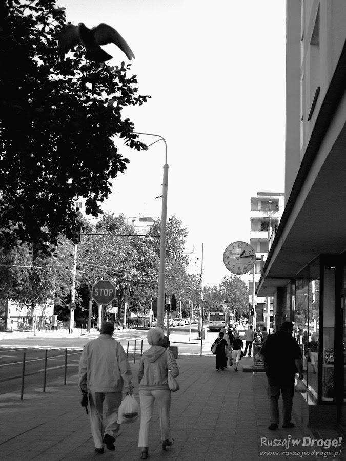 Gdynia - rytm miasta - ulica Wójta Radtkego