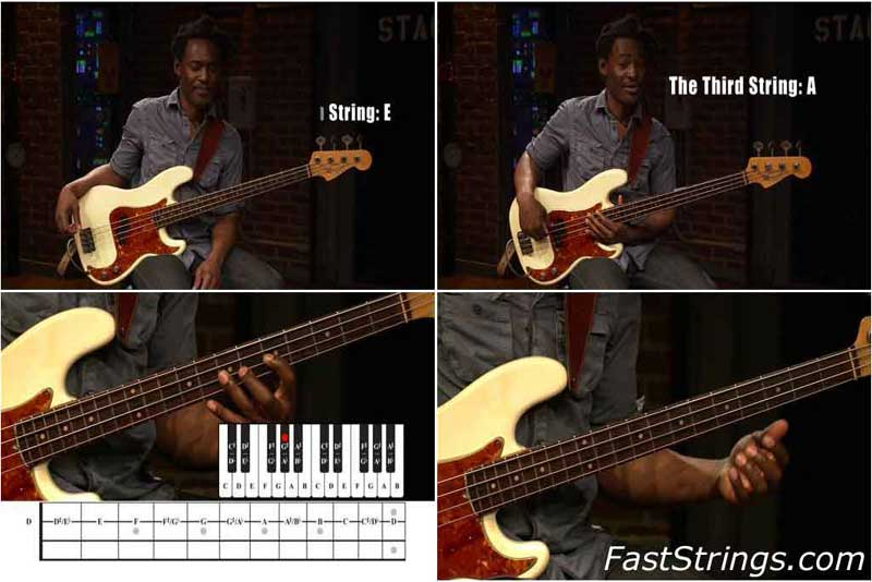 At a Glance - Bass Fretboard Theory