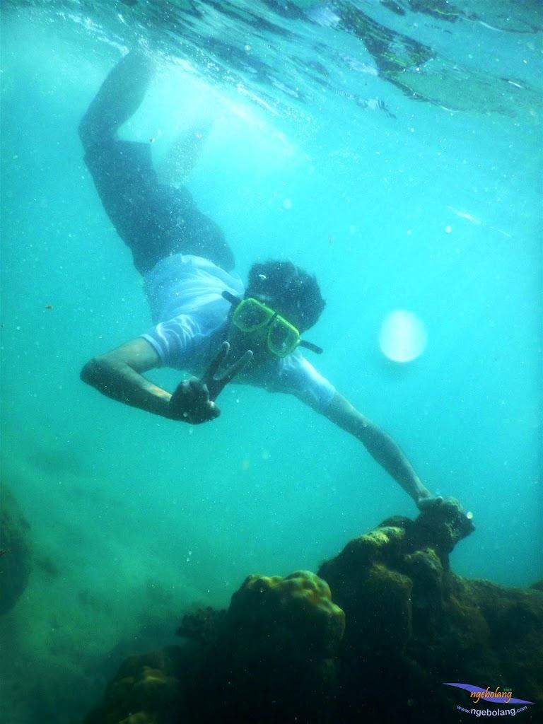 pulau pari, 23-24 mei 2015 28