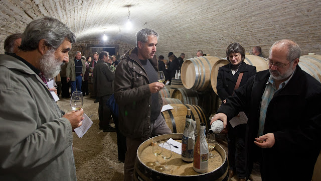 Dégustation des chardonnay et chenin 2011 - 2012%2B11%2B10%2BGuimbelot%2BHenry%2BJammet%2Bd%25C3%25A9gustation%2Bdes%2Bchardonnay%2Bet%2Bchenin%2B2011%2B100-016.jpg
