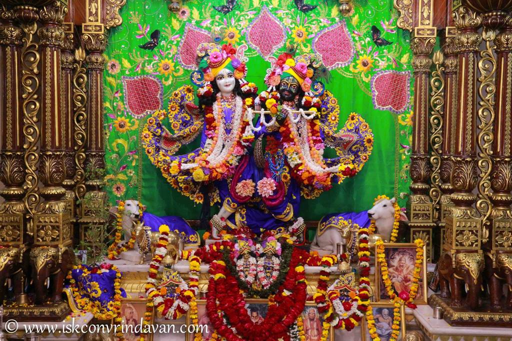 ISKCON Vrindavan Sringar Deity Darshan 01 Mar 2016 (16)